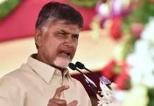 AP Cm Chandrababu Transfer Of Cash To Farmers