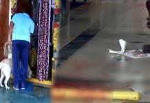Thiefs Murder attempt on Women at Vijayawada