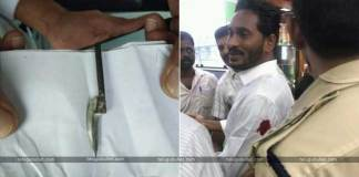 YSR Congress chief YS Jaganmohan Reddy Attacked With Knife At Visakhapatnam Airport