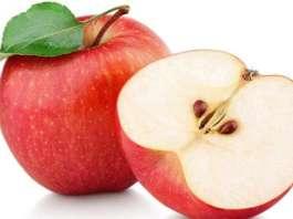 100 million bacteria in one apple!