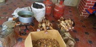 Oil from dead animals ... Tasmat Beware