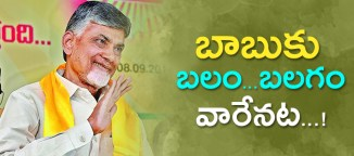 chandrababunaidu strenth