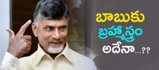 chandrababunaidu last effort on elections