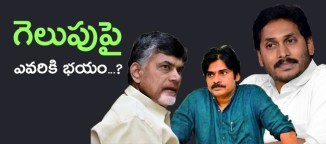 who is the winner in andhrapradesh