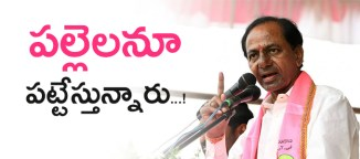 trs-in-panchayath-elections