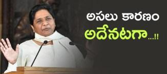mayavathi-primeminister-candidature