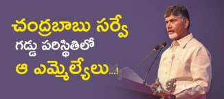 chandrababu survey on mlas