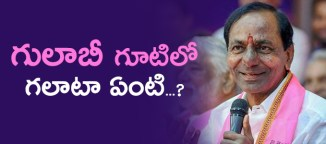 group-fight-in-trs-party