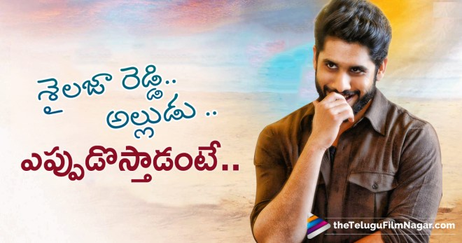 Sailaja Reddy Alludu Movie Release Date, Latest Telugu Film News,Telugu Filmnagar,Telugu Movies News 2018,Tollywood Movie Updates,Sailaja Reddy Alludu Movie Shooting Schedule,Naga Chaitanya Shailaja Reddy Alludu Movie Latest News,Naga Chaitanya Next Upcoming Movie,Sailaja Reddy Alludu Release Date Fixed,శైల‌జారెడ్డి అల్లుడు ఎప్పుడొస్తాడంటే