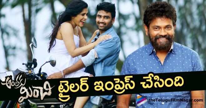 #AnthakuMinchi, Anthaku Minchi Movie, Anthaku Minchi Trailer, Latest Film News, Rashmi Gautam Anthaku Minchi Telugu Movie, Rashmi Gautam Anthaku Minchi Trailer, Sukumar about Anthaku Minchi, Sukumar Launches Rashmi Gautam's Anthaku Minchi Trailer, Sukumar Praises Anthaku Minchi Trailer, Telugu Cinema Updates, Telugu Filmnagar