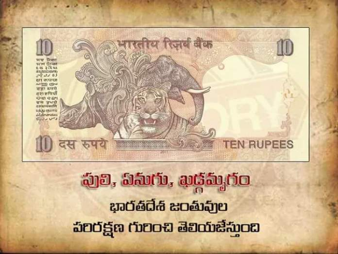 currency-notes-3
