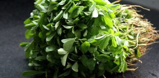 methi drumstick leaf uses