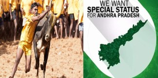 difference between jallikattu and ap special status