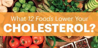 12 Good Foods Which Reduce Cholesterol