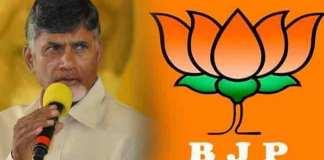 AP CM Masterstroke to Modi