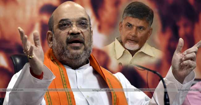 Amit Shah's Final Call On An Alliance With TDP In 2019