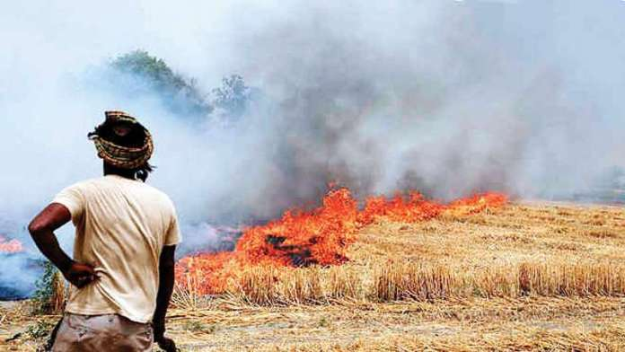 """""""Time To Punish Officers"""": Supreme Court On Stubble Burning"""