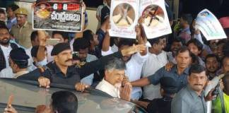 Police arrests TDP Chief in Visakhapatnam due to security Reasons