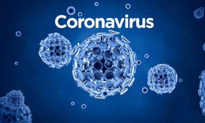 Corona Virus Cases in us