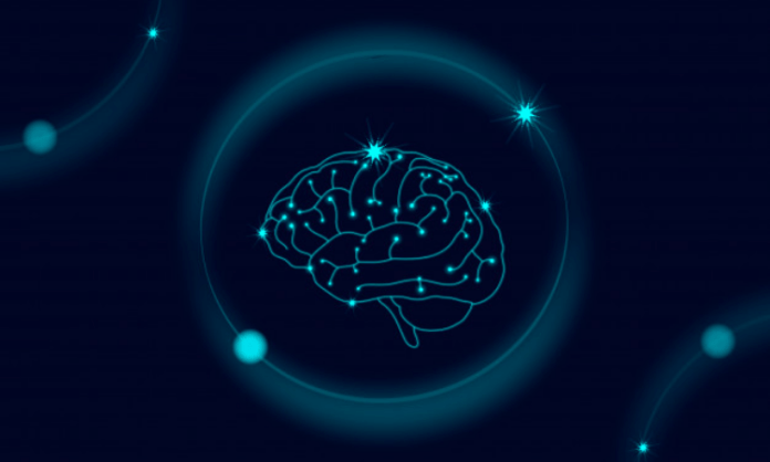 Human brains generate common code to mark others' location
