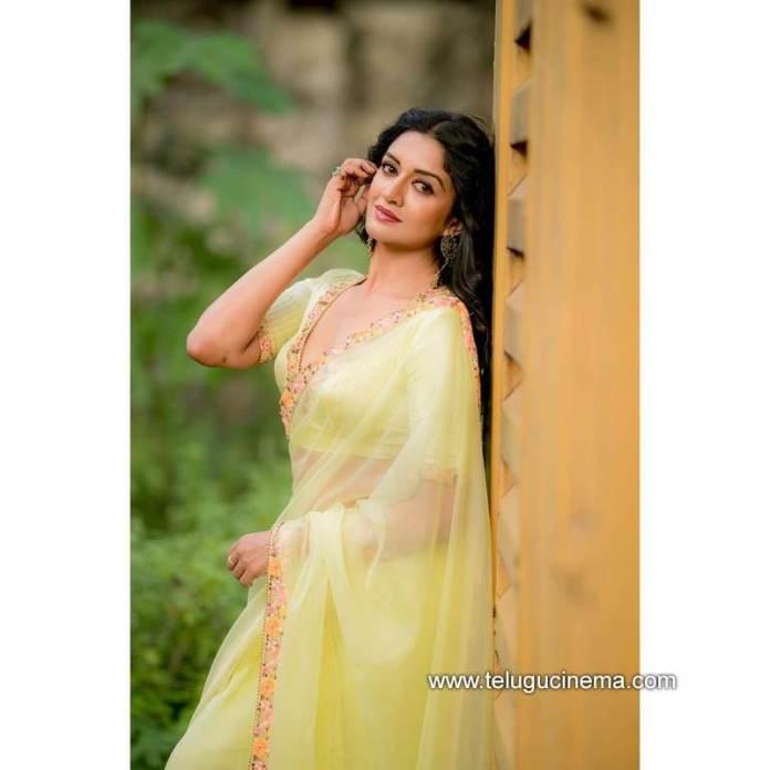 Vimala Raman's Saree love