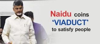 Chandrababu Naidu VIADUCT