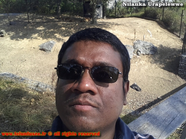 nilanka-urapelewwe-blog-voyage-france-zoo-de-vincennes-travel-blog-telunfusee-14