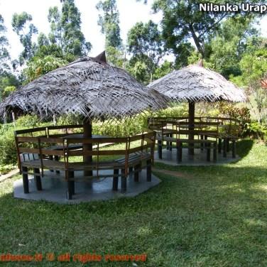 nilanka-urapelewwe-blog-voyage-sri-lanka-welimada-travel-blog-telunfusee-55