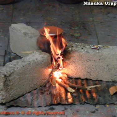 nilanka-urapelewwe-blog-voyage-sri-lanka-welimada-travel-blog-telunfusee-77