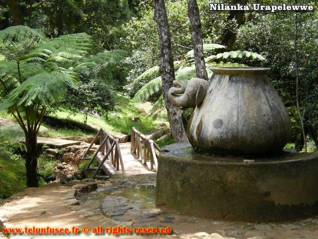 nilanka-urapelewwe-blog-voyage-srilanka-hakgala-garden-nuwara-eliya-travel-blog-telunfusee-11
