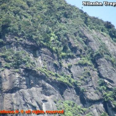 nilanka-urapelewwe-blog-voyage-srilanka-hakgala-garden-nuwara-eliya-travel-blog-telunfusee-30