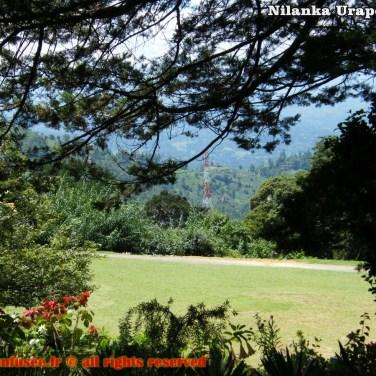 nilanka-urapelewwe-blog-voyage-srilanka-hakgala-garden-nuwara-eliya-travel-blog-telunfusee-36