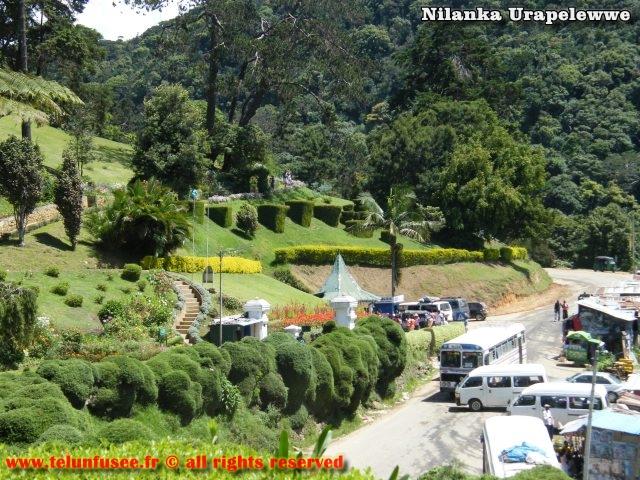 nilanka-urapelewwe-blog-voyage-srilanka-hakgala-garden-nuwara-eliya-travel-blog-telunfusee-4