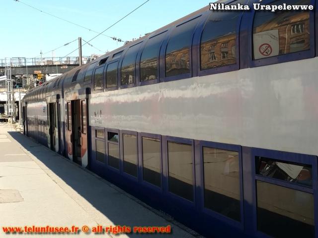 nilanka-urapelewwe-blog-voyage-europe-train-travel-blog-telunfusee-12