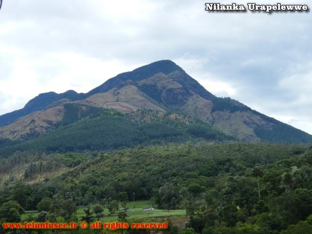 nilanka-urapelewwe-blog-voyage-sri-lanka-badulla-travel-blog-telunfusee-7