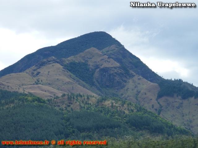 nilanka-urapelewwe-blog-voyage-sri-lanka-badulla-travel-blog-telunfusee-8