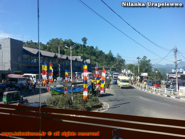 nilanka-urapelewwe-blog-voyage-sri-lanka-bandarawela-travel-blog-telunfusee-14