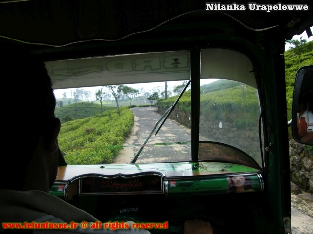 nilanka-urapelewwe-blog-voyage-sri-lanka-dambethanna-liptons-seat-travel-blog-telunfusee-6