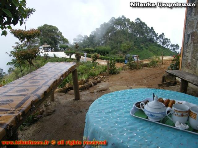 nilanka-urapelewwe-blog-voyage-sri-lanka-dambethanna-liptons-seat-travel-blog-telunfusee-7