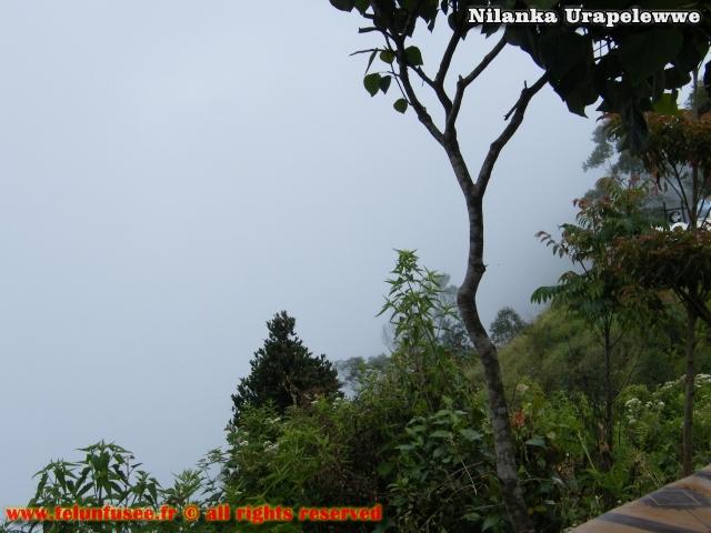 nilanka-urapelewwe-blog-voyage-sri-lanka-dambethanna-liptons-seat-travel-blog-telunfusee-9