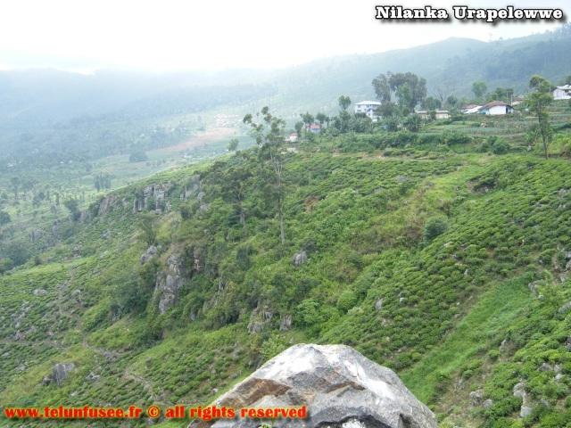 nilanka-urapelewwe-blog-voyage-sri-lanka-haputale-travel-blog-telunfusee-6