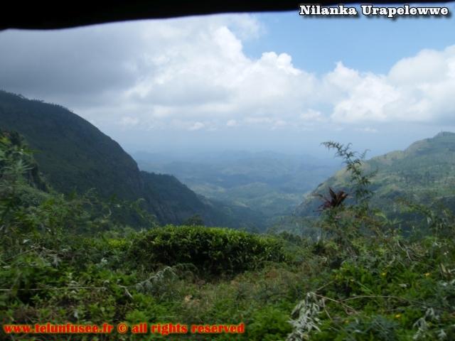 nilanka-urapelewwe-blog-voyage-sri-lanka-haputale-travel-blog-telunfusee-8