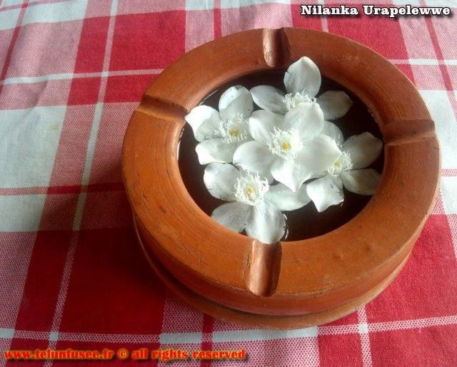 nilanka-urapelewwe-blog-voyage-sri-lanka-kalutara-travel-blog-telunfusee-10