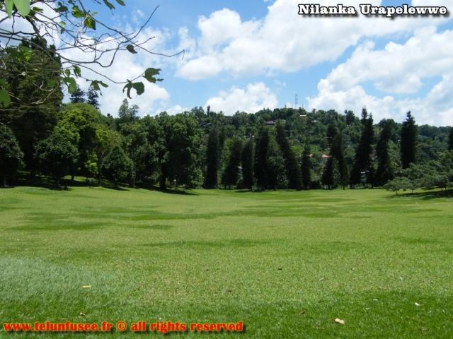 nilanka-urapelewwe-blog-voyage-sri-lanka-kandy-travel-blog-telunfusee-30