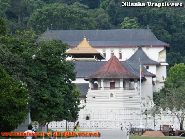nilanka-urapelewwe-blog-voyage-sri-lanka-kandy-travel-blog-telunfusee-6