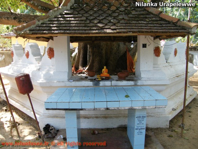 nilanka-urapelewwe-blog-voyage-sri-lanka-nikapotha-beralagala-travel-blog-telunfusee-6