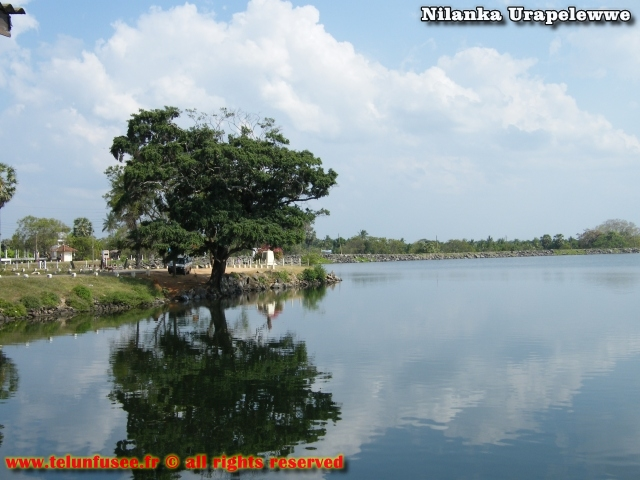 nilanka-urapelewwe-blog-voyage-sri-lanka-polonnaruwa-travel-blog-telunfusee-5