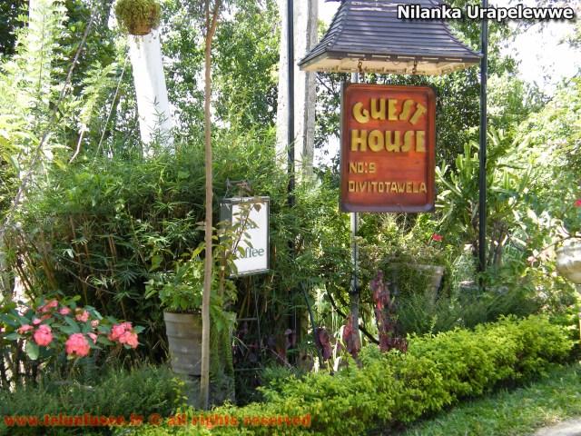 nilanka-urapelewwe-blog-voyage-sri-lanka-welimada-travel-blog-telunfusee-14