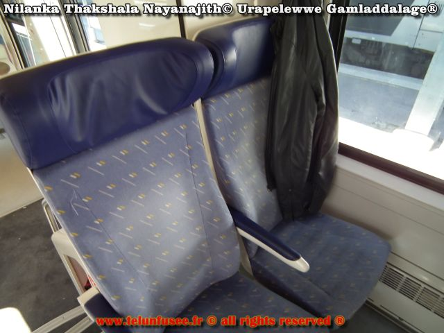 nilanka_urapelewwe_europe_train_ter_annecy_paris_lyon_travel_blog_telunfusee_2018-5