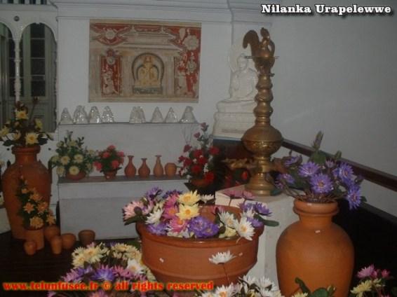 nilanka-urapelewwe-blog-voyage-srilanka-laksala-colombo-travel-blog-telunfusee-10